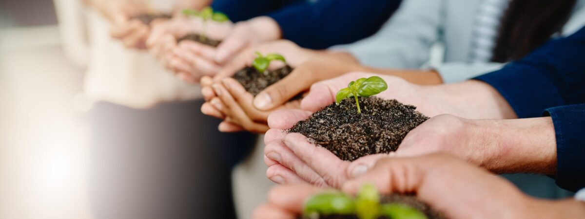 4 Tips For Growing Your Business