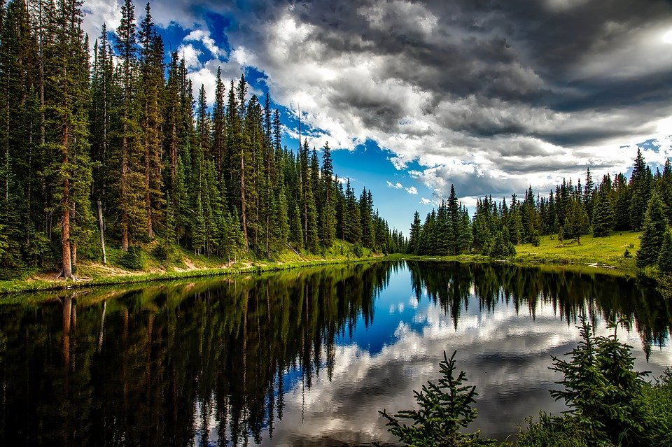 Lake, Conifers, Clouds, Trees, Sky, Cloudy Sky